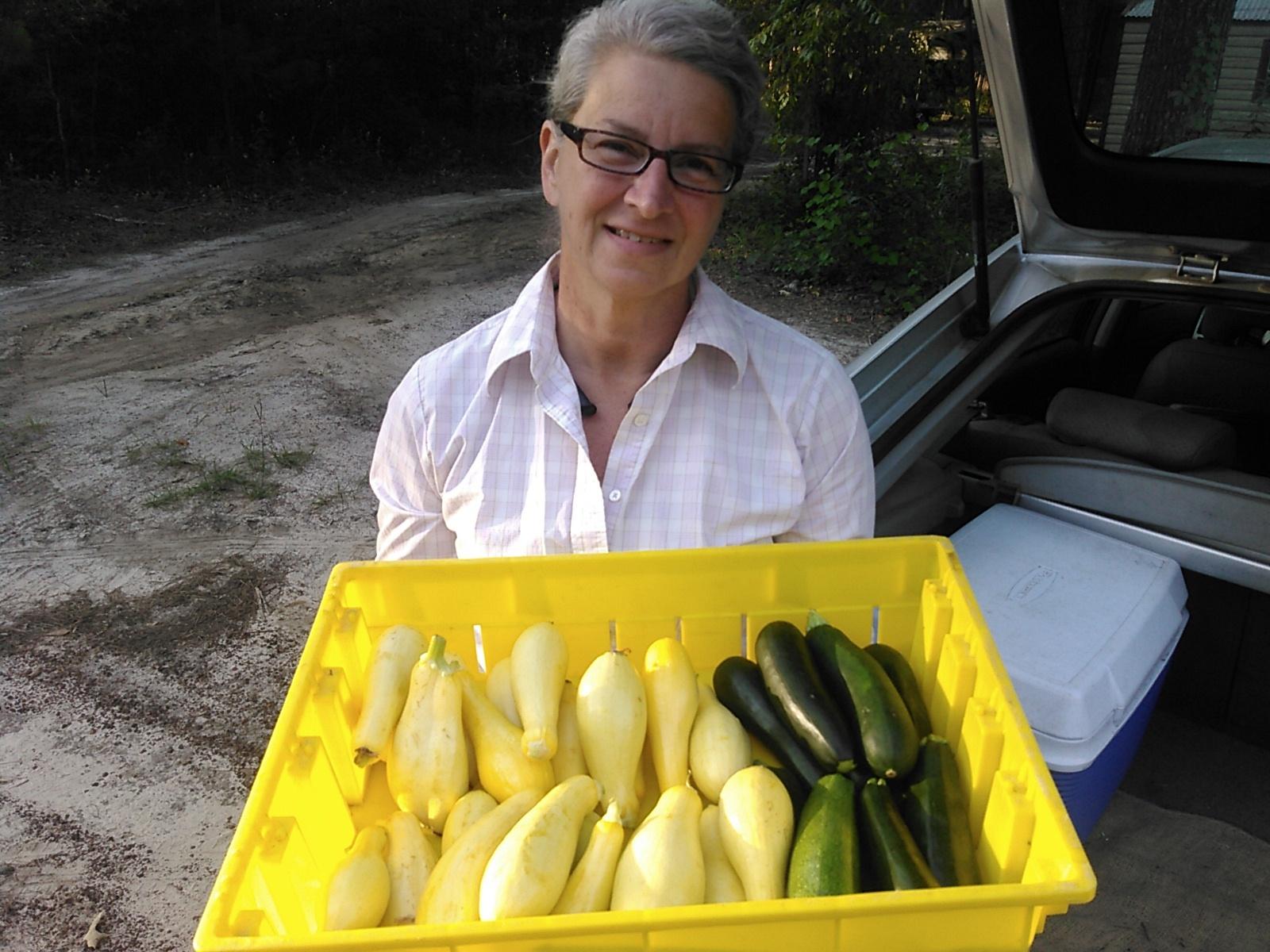 1600x1200 Yellow squash and zuchinni, in Squash, zucchini, and rosemary, by John S. Quarterman, 28 May 2016